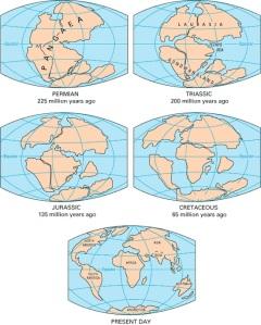 pangea-continental-drift