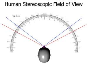 Stereoscopic_Field_of_View