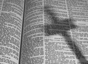 9665664-open-bible-with-a-shadow-of-a-cross