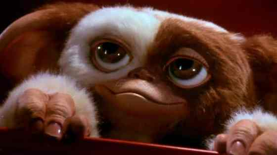 gizmo-gremlins-so-cute